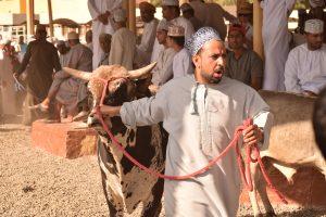 Il mercato del bestiame di Nizwa in Oman
