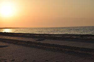 Spiaggia vicino a Sur in Oman al tramonto
