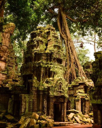 Visitare Angkor: Ta Prohm avvolto dalla giungla