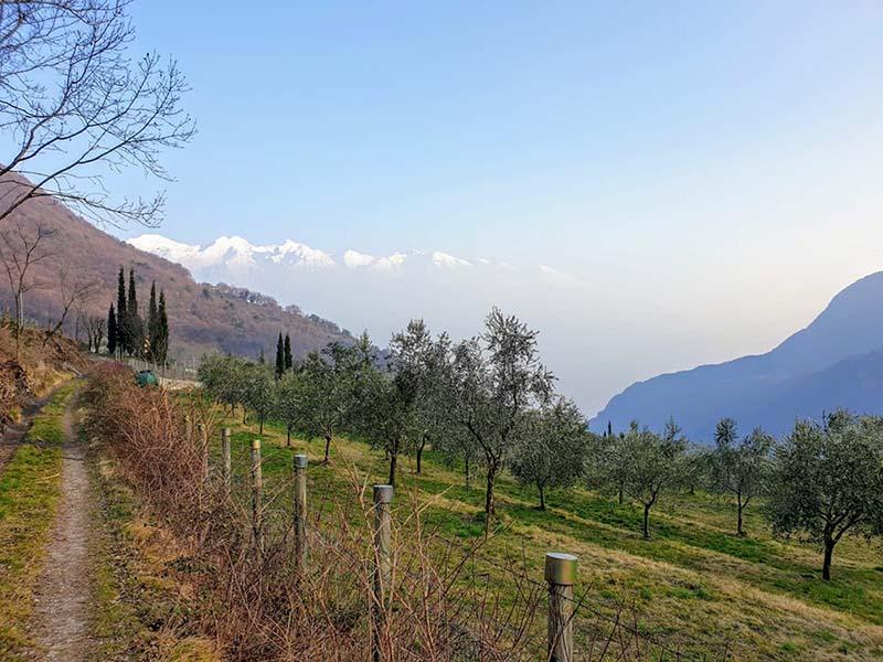 Sentiero panoramico sul Lago di Garda
